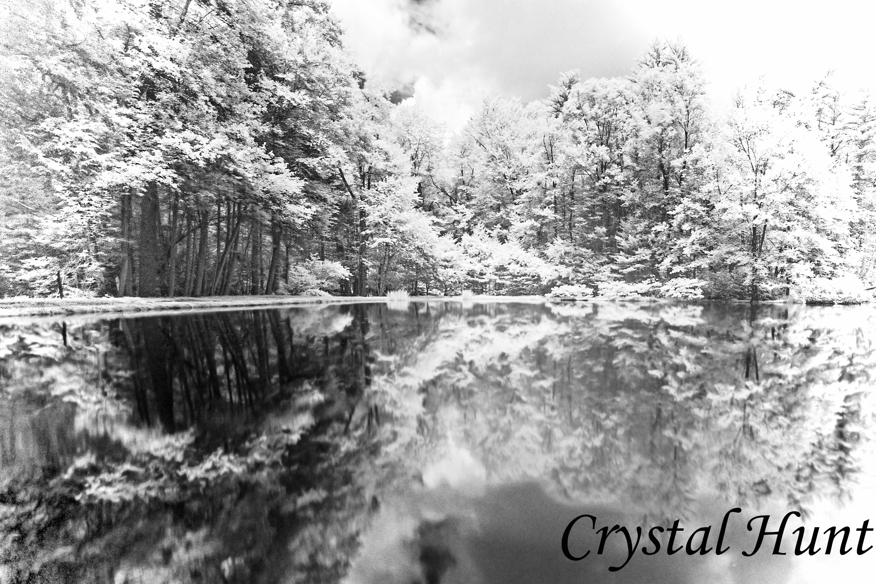 Caledonia Pond in Infrared